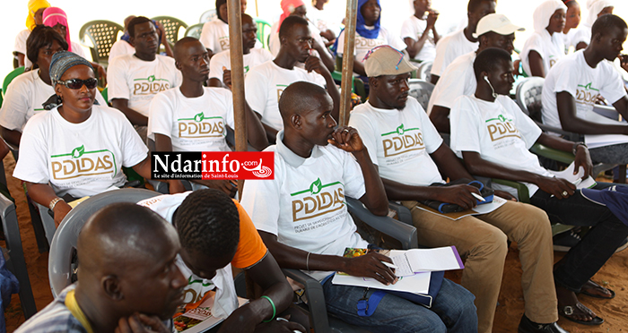 NGNITH : un incubateur pilote formera près d'une centaine de jeunes.