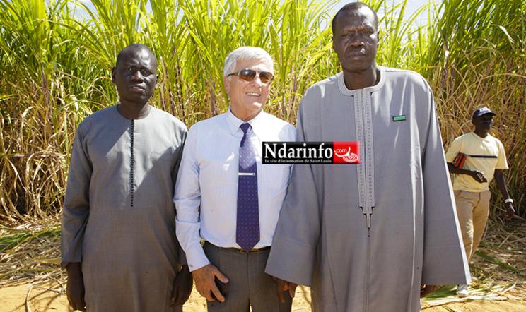 Cheikh CISSE, le Président de l'Unacois, André FROISSARD, Dg de la CSS et Serigne MBOUP, le président de la Chambre de Commerce de Dakar