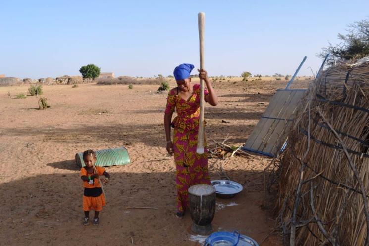 Combat des femmes pour leurs droits à la terre : cas des femmes de Ndiael contre Senhuile