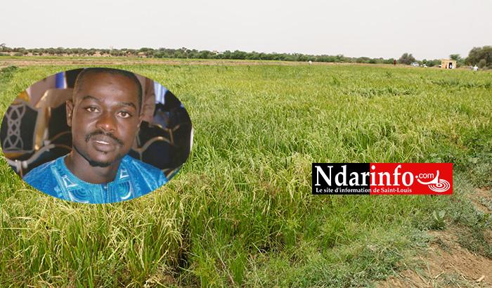 WALO : le MRFP liste les maux qui gangrènent l'agriculture.