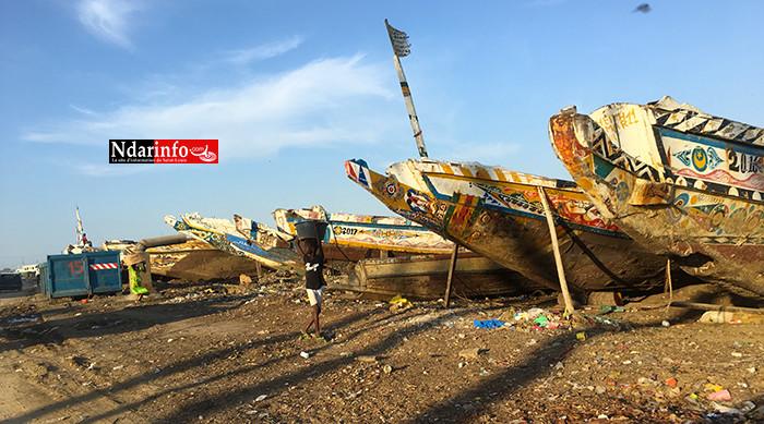 GOXU MBACC : Mansour FAYE nettoie les berges (photos)