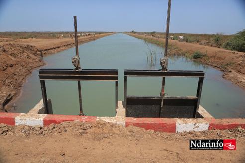 Essor de la Compagnie agricole de Saint-Louis : l'accès à l'eau aux producteurs locaux, un pari relevé (vidéo)