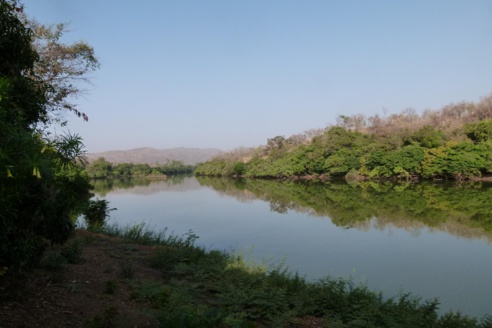 Alerte – Le fleuve Gambie se tarit à Kédougou