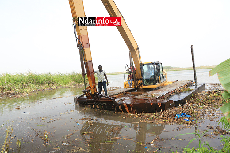 POLLUTION À BANGO : l'intervention de la SAED freine le mal (vidéo)