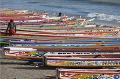 Pêche : 208 pirogues obtiennent leur autorisation