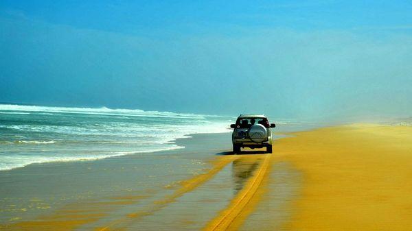 Un chercheur propose des solutions naturelles pour stabiliser les plages