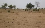 Ndiael : 27 millions pour la revitalisation