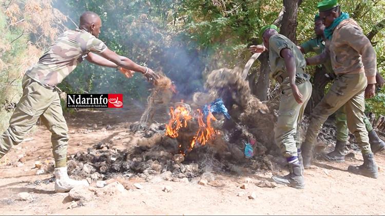 PARC DU DJOUDJ : 2 braconniers arrêtés avec 7 pirogues, 42 filets de pêche saisis et brûlés (vidéo)