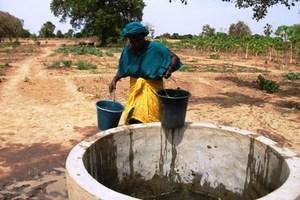 Guent Ndellé: La grande corvée d'eau pour survivre