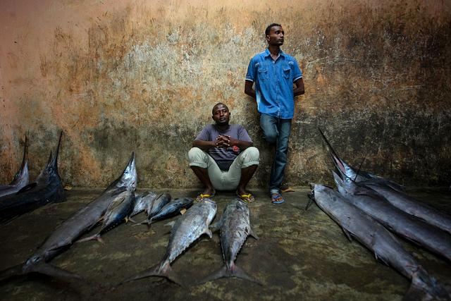 Interdiction de la main-d'œuvre étrangère en Mauritanie : Mouvement de protestation dans la filière de la pêche artisanale