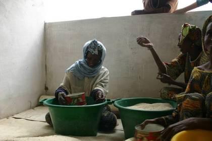 Programme d'appui aux communautés rurales (PACR/VFS): Le projet de budget 2012 estimé à près de 1 milliard 800 millions