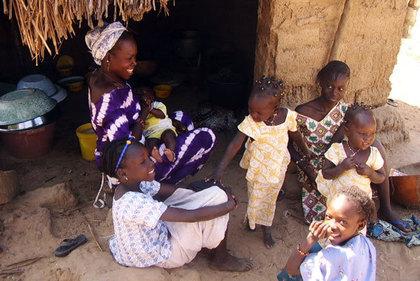 Reboisement et Amélioration de la sécurité alimentaire à Fass et à Gandon:  Masseck Ndiaye et Woré Gana Seck en croisade contre la pauvreté