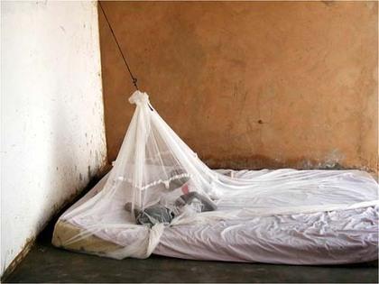 Lutte contre le paludisme à Saint-Louis: 213.600 moustiquaires destinées à la région Nord