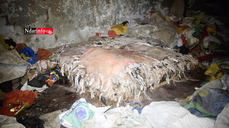 Décor lugubre au marché NDAR : des hordes de rats, des toits cassés et des amas de déchets … (vidéo)