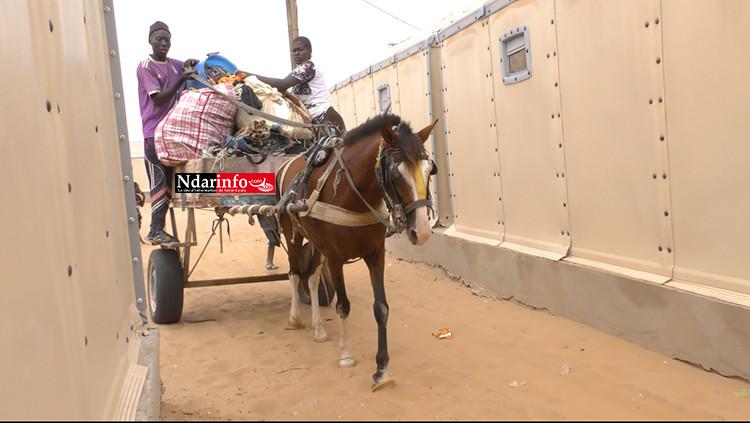 KHAR YALLA : le déménagement vers Djougob a démarré (photos)