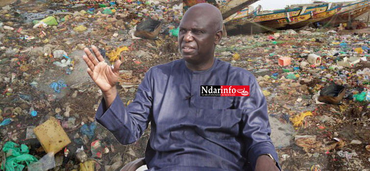 """Après l'échec de """"NDAR SETT WECC"""", Mansour FAYE trouve un nouveau slogan !"""