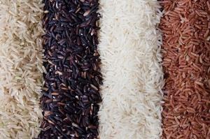 Riziculture dans la vallée : Des paysans plaident pour une intensification des surfaces cultivables