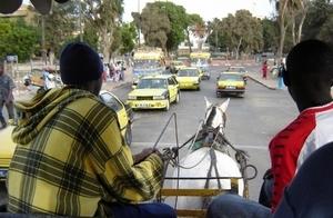 Saint-Louis : La nomination de Youssou Ndour appréciée positivement par certains acteurs du tourisme