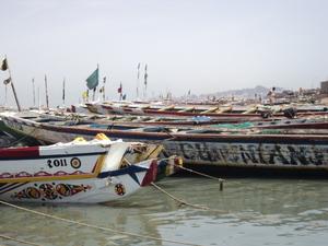 FIARA : Pape Diouf annonce des mesures sur les licences de pêche