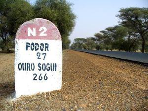 PODOR : Le Pds décimé avec le ralliement du Sg fédéral Moussa Sow à l'Apr