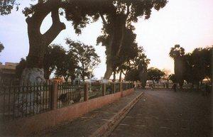 Saint-Louis : Bientôt, la place Faidherbe et l'avenue Charles de Gaulle seront rénovées (maire)