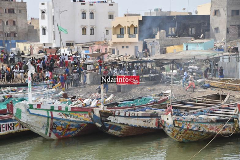Rage des pêcheurs : plusieurs blessés et beaucoup de dégâts matériels enregistrés (photos)