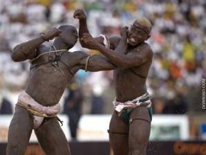 La lutte sénégalaise, une équation à « 200 » inconnus : Le « sang » et le « sans » verdict.