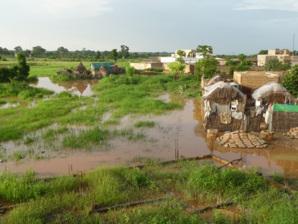 C'est la crue à Matam : le fleuve déborde sur les champs des producteurs