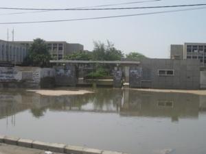 Les quartiers de  Khare Yalla, Darou, Cité Niakhe, Médina Courses et Diaminar inondés: Les populations crient au secours (Audio)