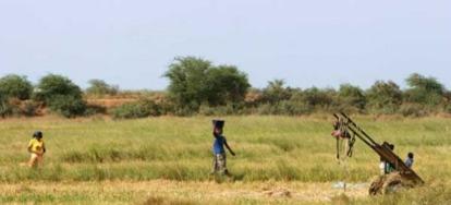 Un économiste remet en question un projet agroindustriel de la BM dans le Nord
