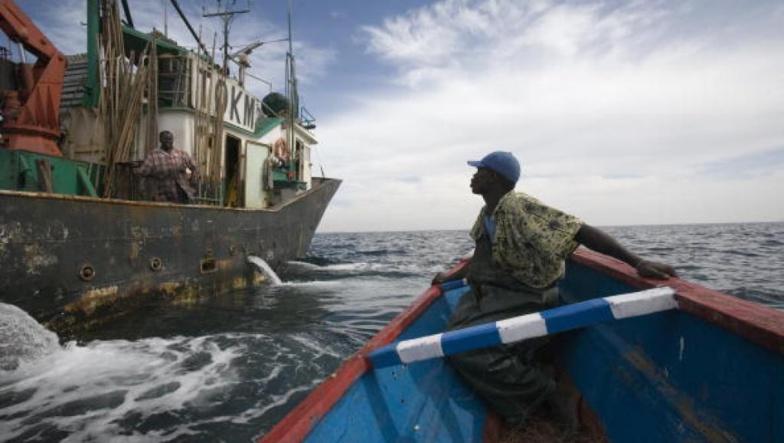 L'ONG Greenpeace dément le ministre de la Pêche