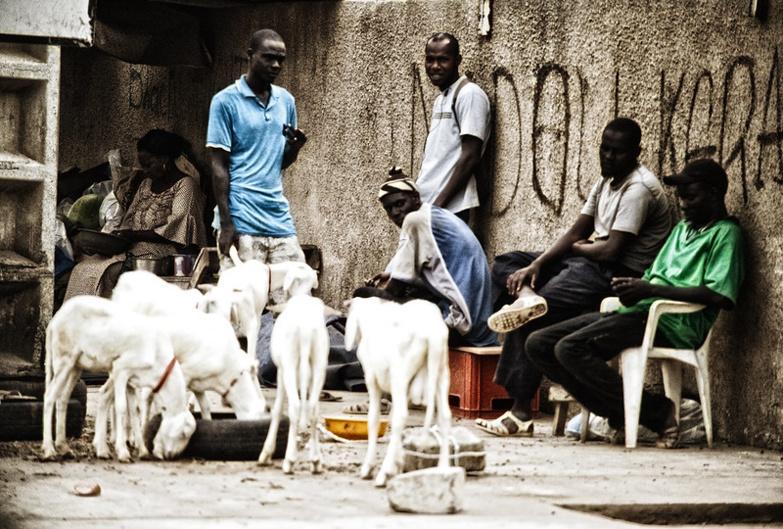 Record de chômeurs : Le Sénégal classé 3e pays dans le monde (Rapport OIT)