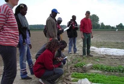 Coopération: 12 lycéens et apprentis lommois (Lille) vont visiter le centre d'initiative horticole de Saint-Louis.