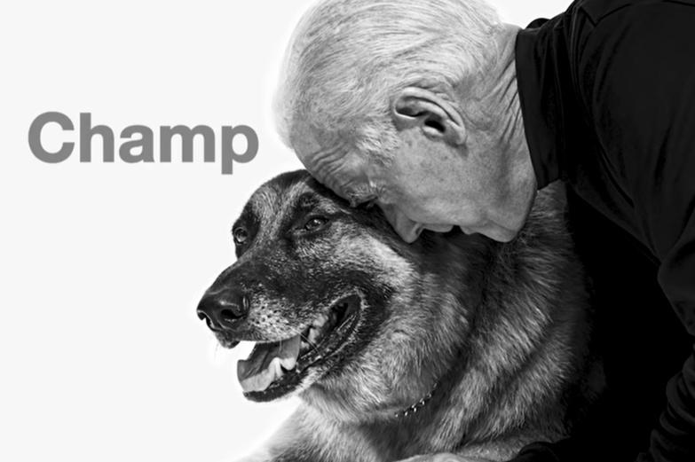 Joe Biden se tord la cheville en jouant avec son chien