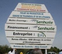 Le projet Sen huile/Sen éthanol divise les populations de Nguith.