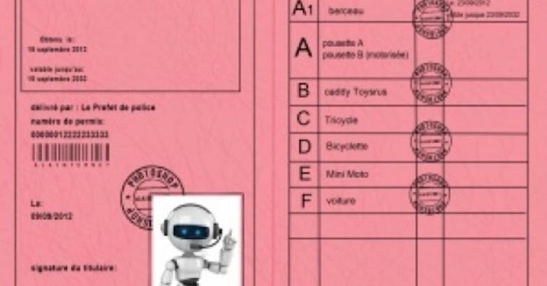 Les permis de conduire ''roses'' ne sont plus valables (ministère)