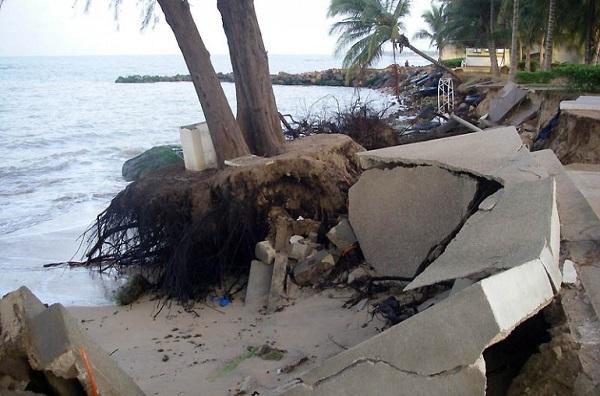 Erosion côtière en Casamance : Une avalanche de menaces sur l'avenir des communautés du littoral