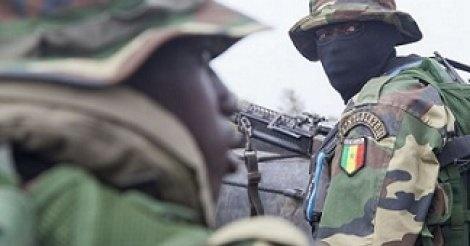 Casamance : Des opérations en cours pour ''neutraliser'' des bandes armées (DIRPA)