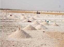 [REPORTAGE] Ndiakhèr : l'espoir d'une vie meilleure avec l'exploitation du sel.