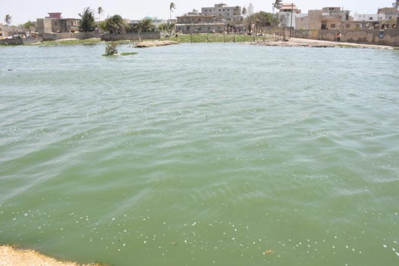 Lutte contre les inondations : En visite à Keur Massar, le ministre Oumar GUEYE se dit satisfait du niveau d'exécution des travaux (photos)