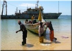 Mauritanie - Arrêt biologique de la pêche artisanale et côtière
