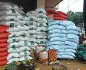Riz : Le Sénégal peut-il atteindre l'autosuffisance, à travers la production locale ?