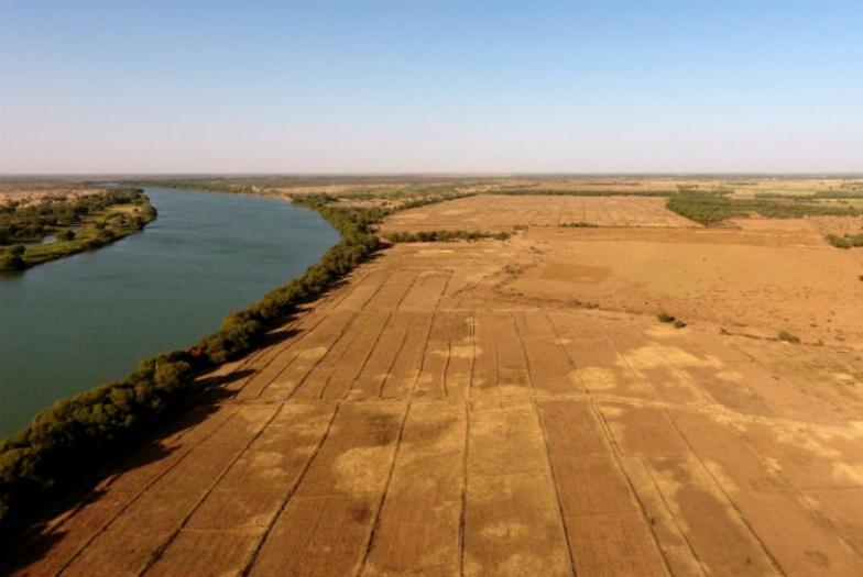 3, 2 millions de dollars pour un projet d'irrigation solaire dans la vallée du fleuve