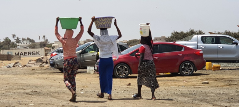 Soif à Ndar : la grosse ruée vers le fleuve (photos)