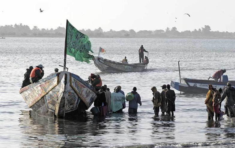 Pêche artisanale : plus de 60.000 tonnes de poissons débarquées annuellement à Saint-Louis