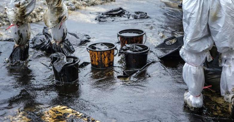 Exploitation pétrolière : un expert anticipe sur le danger des marées noires sur la biodiversité marine