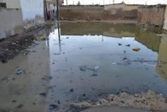 Inondations à Saint-Louis: Le Calvaire Des Habitants De Ndiolofène Nord « Pour Lutter Contre Les Inondations, Nous Déposons Des Ordures Devant Et Dans Nos Concessions…»