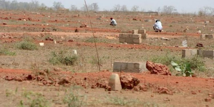 Boulimie foncière : un ex-Receveur des Domaines possède 315 terrains