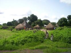 Sénégal/Banque Mondiale : 20 milliards FCFA pour le développement de la Casamance.