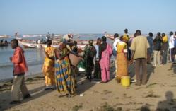 Une étude a identifié l'ensemble des problèmes de la pêche (officiel)